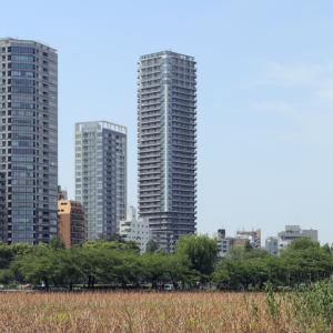 ルネッサンスタワー上野池之端